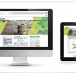 Diseño de páginas web en México 1