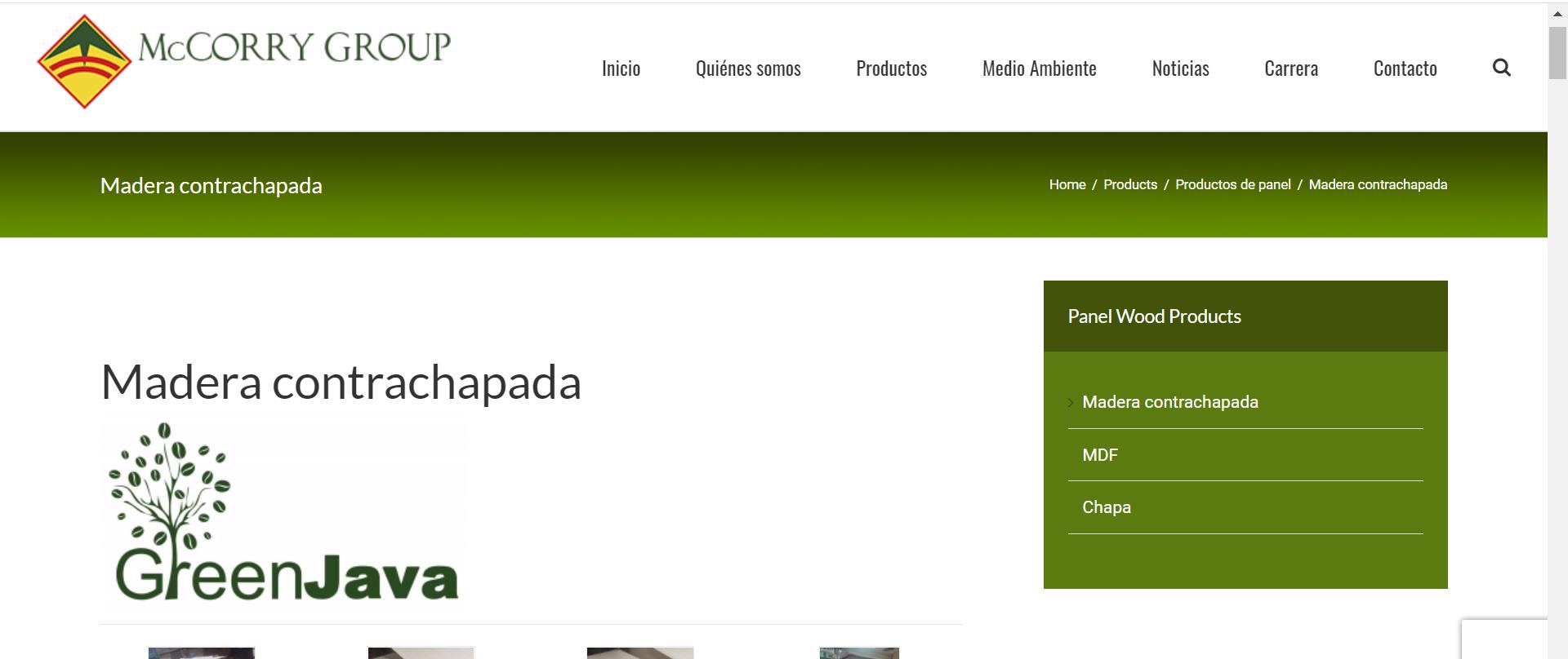 Diseño de páginas web en México 5