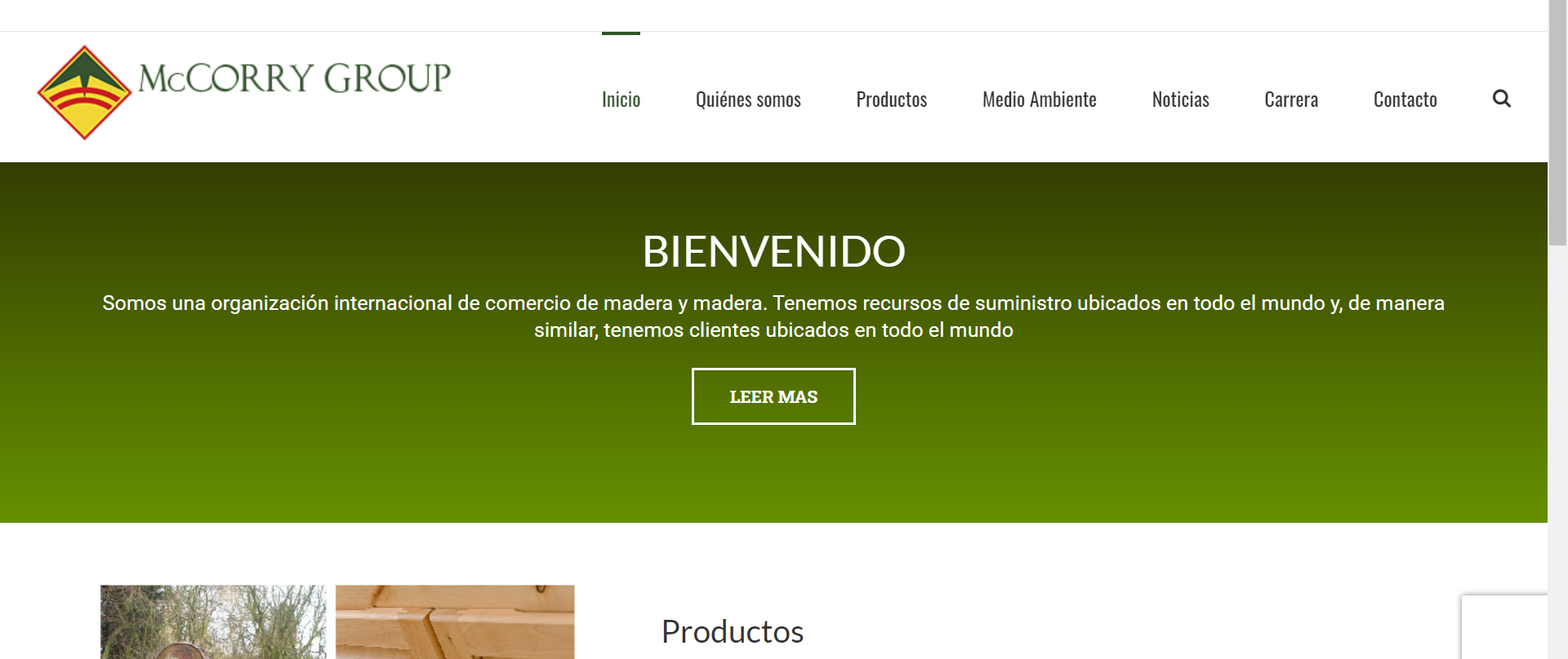 Diseño de páginas web en México 4